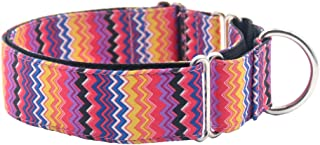 martingale collar italian greyhound