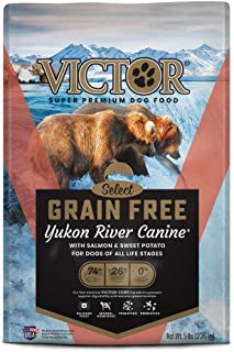Best native dog food retailers Reviews