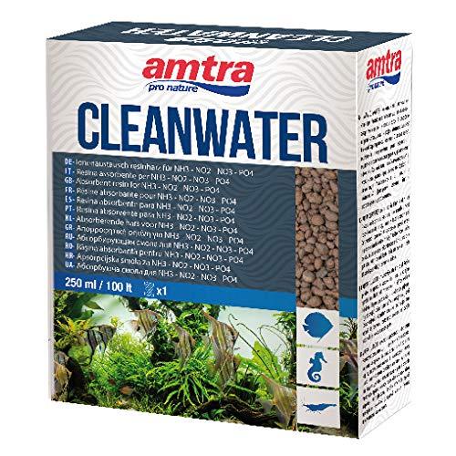 Amtra CLEANWATER - Resina Assorbente per inquinanti organici (NH3 NO2 NO3 PO4) in acquari d'Acqua Dolce e Marina, Formato 250 ml