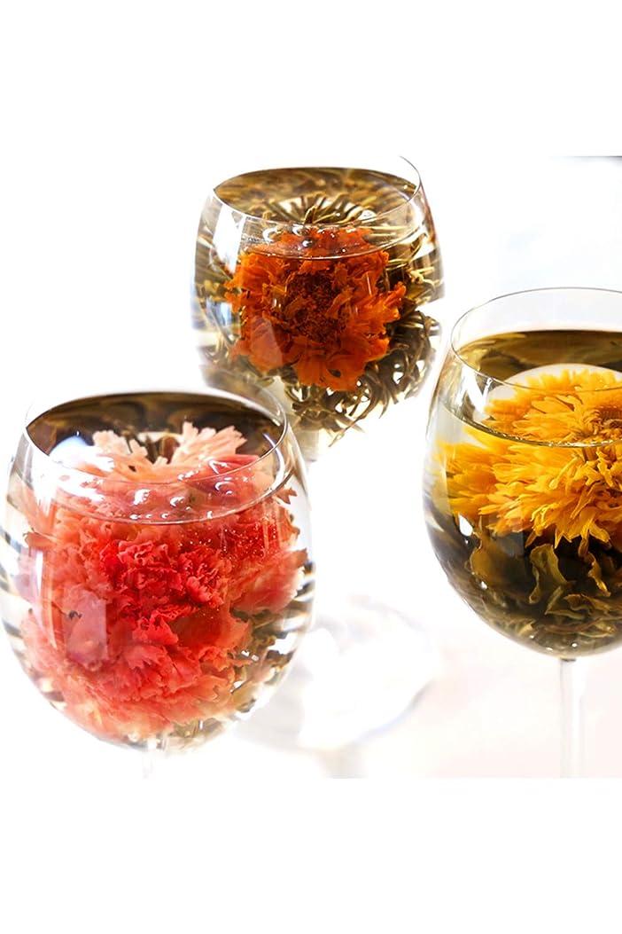 グローバルカバレッジ海工芸茶 セット 10種類 詰め合わせ カーネーション茶 ジャスミン茶 花茶 中国茶 ジャスミンティー プチギフト (ビニールラッピング)
