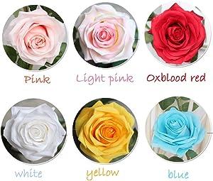 DerBlue 5.9Ft Artificial Rose Flowers Vine Silk Rose Garland Fake Flowers Silk Roses Garland for Wedding Decorations Garden Wall Valentine Decoration (Cream)