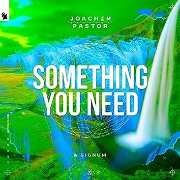 Something You Need