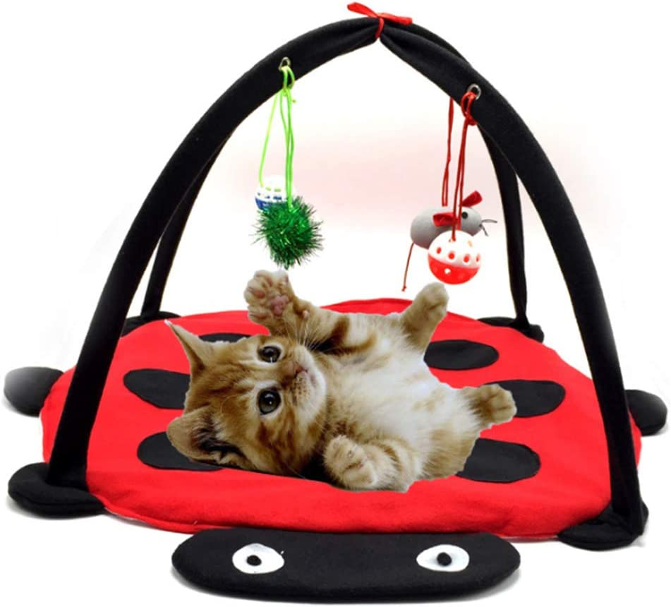 LCTS Cat Bed Tent All items free shipping Hammock Toy Climbing C Funny Frame Branded goods