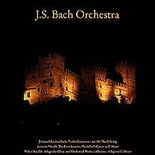 Johann Sebastian Bach: Violin Concerto; Air On the G String - Antonio Vivaldi: the Four Seasons - Pachelbel's Canon in D Major - Walter Rinaldi: Adagio for Oboe; Orchestral Works - Albinoni: Adagio in G Minor - Vol. VII