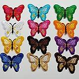 Chenkou Craft 24 parches bordados con dise├▒o de mariposas, varios colores, para planchar o coser.