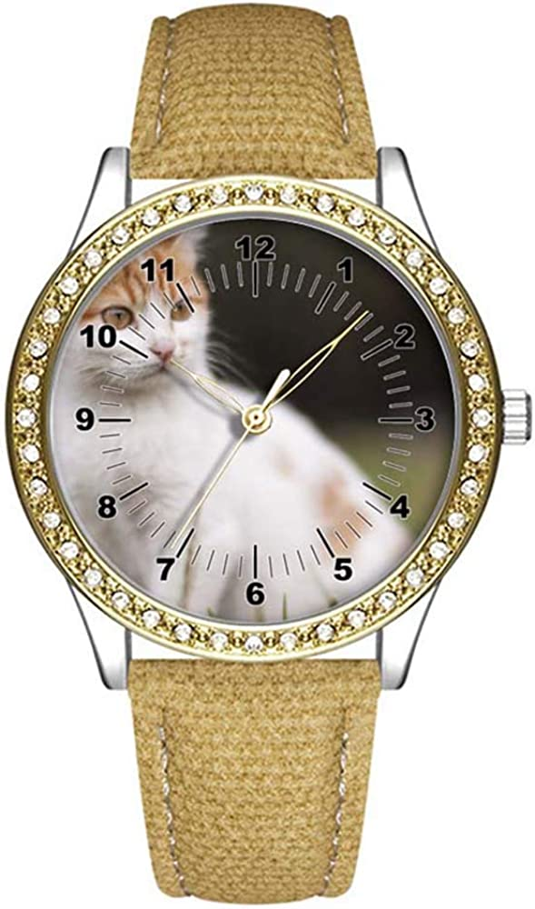 Diamond Womens Leather Watch Spring new work Fashion for Wom Watches Casual Gold Ranking TOP9