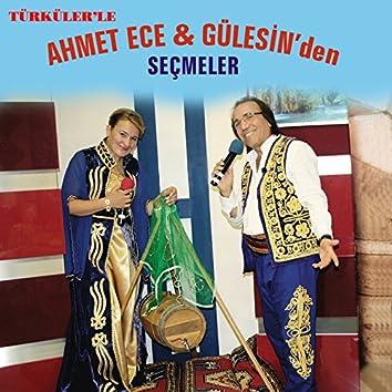 Türküler'le Ahmet Ece Gülesin'den Seçmeler