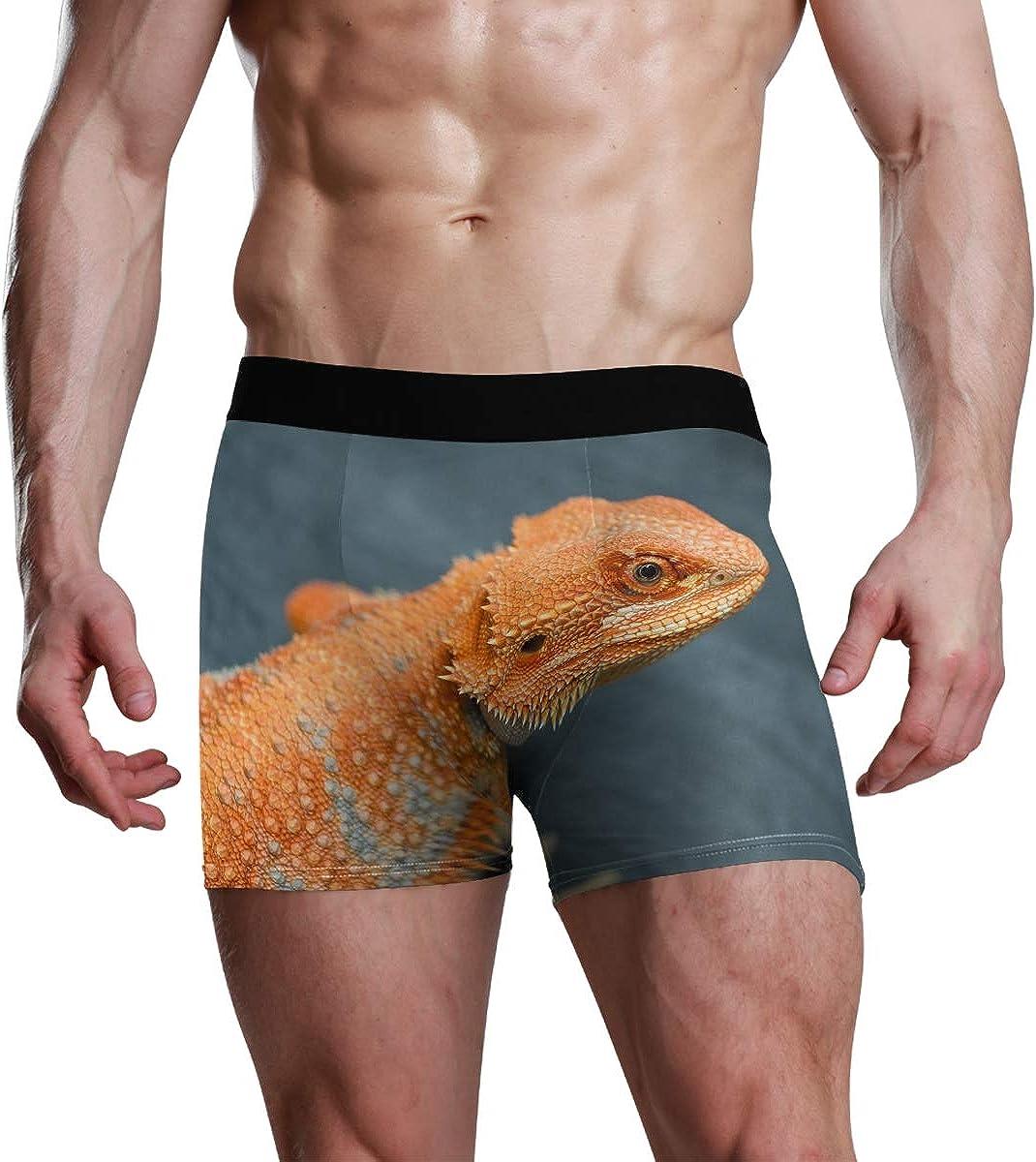 Mens Underwear Briefs Red Orange Breaded Dragon Breathable Long Boxer Briefs Underwear Boys