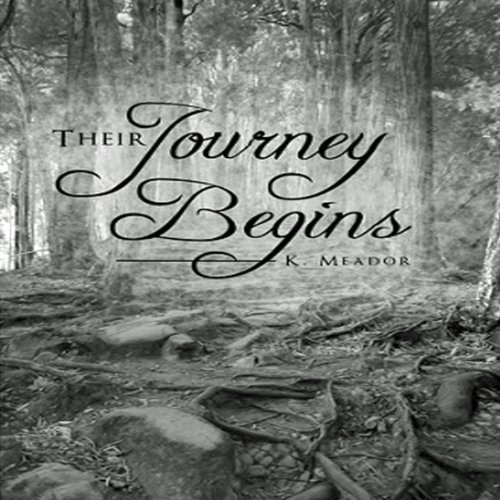 Their Journey Begins audiobook cover art