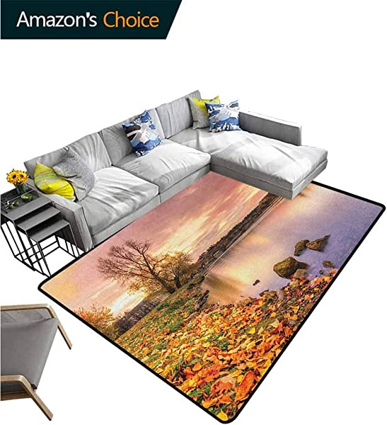 Landscape Polka Dot Door Mats Inside Bohemian Old Town Scenery By The River With Gothic Buildings In The Fall Sunset Easy Maintenance Area Rug Living Room Bedroom Carpet 2 X 6 Pink Orange