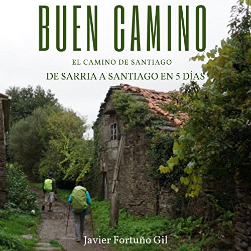Buen Camino: El camino de Santiago [Good Road: The Road to Santiago] audiobook cover art
