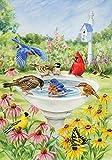 Toland Home Garden Eintauchender Vogel, Bunt