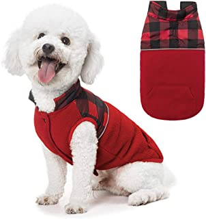 Best cute dog vests Reviews