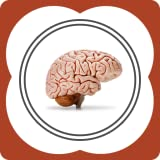 The Brain - Enhance Cognitive Functions and Consciousness With Stimulation of Thought for The Intelligent Mind