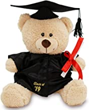 GiftsForYouNow Class of 2019 Plush Graduation Teddy Bear with Cap and Gown
