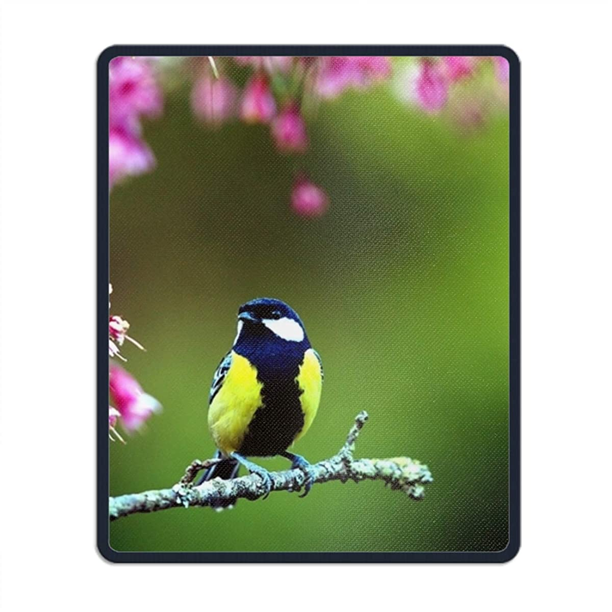 SSOIU Mouse pad,Personalized Unique Design Oblong Shaped Mouse Pad Bird Spring Flowers