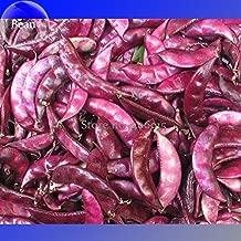 TopOne Sales Ruby Moon Red Hyacinth Bean Seeds, 8 Seeds, organic vegetables