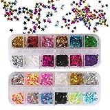 EBANKU 24 Boîtes Paillettes à Ongles Holographique,3D Flocons Paillettes à Ongles étoile Pour Nail Art Glitter Festival Décoration