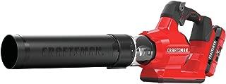Best craftsman 60v battery Reviews