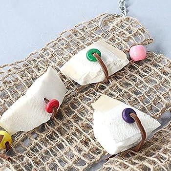 ZHANGJINYISHOP2016 Coupes d'os de la mousseuse à rames d'oiseau Bird Food Seatlefish Bone Perroquet Jouets Bird Cage Accessoires