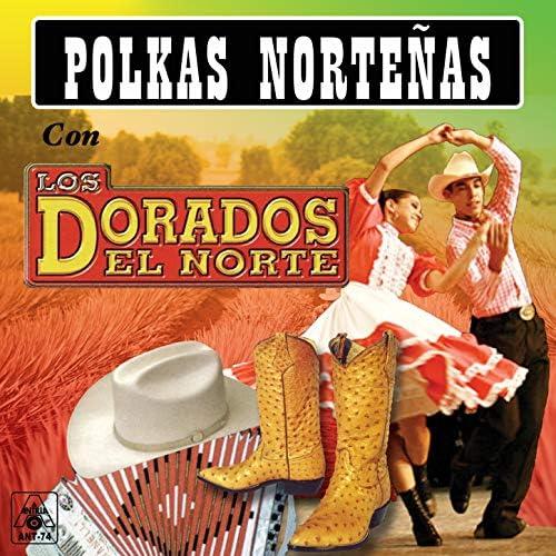 Los Dorados del Norte