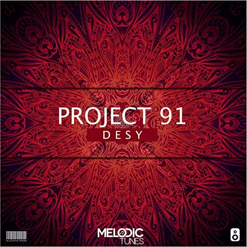 Project 91