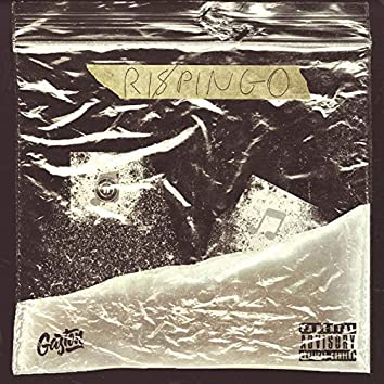 RIS/SPINGO