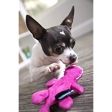 GoDog Just For Me With Chew Guard, Small, Pink Gator