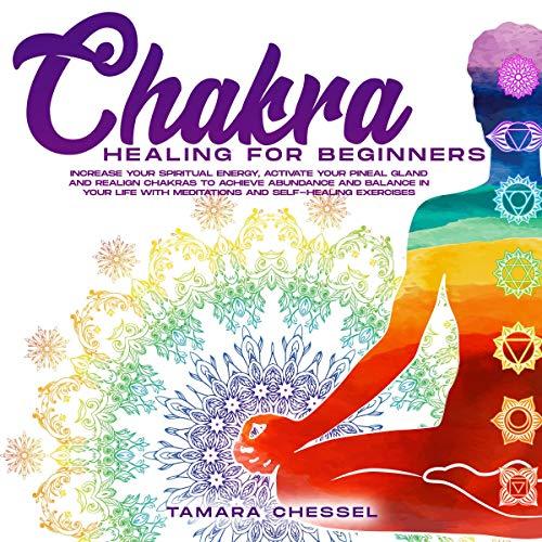Chakra Healing for Beginners Audiobook By Tamara Chessel cover art
