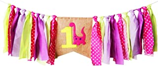 Dinosaur Theme 1st Birthday Party Decoration Supply High Chair Banner Bunting for Baby Girl - Pink Dinosaur Theme
