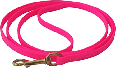 J&J Dog Supplies Biothane Dog Leash