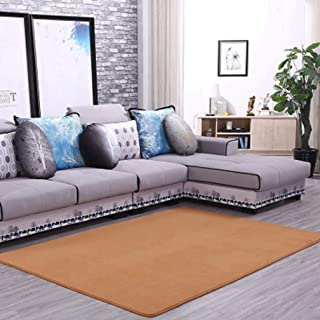 Solid Rectangular Area Rugs Soft Living Room Children Bedroom Rug Coral Fleece Anti-Slip Carpets Home Decor Modern Indoor Outdoor Runners Nursery Rugs 3' X 7'