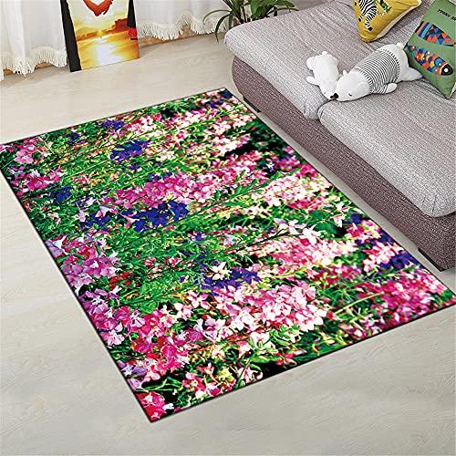 Dormitorios Matrimonio Interiores La Alfombrers Pequeña flor Modelista moderno Modelo de paisaje Sala de estar Alfombra suave dormitorio alfombra duradera se puede lavar Alfombras Para Salon 1