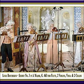 Boccherini: Sextet No. 3 in A Major, G. 463 (Live)