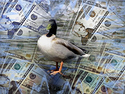 LAMINATED 32x24 inches Poster: Money Dollar Business Finance Currency Caricature Photo Effects Bodyguard Bird Nature Water Blue Fountain Tulip Garden Keukenhof Netherlands Holland Travel Memory