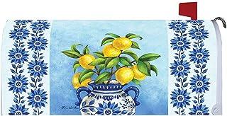 Custom Decor Blue Willow & Lemons - Mailbox Makeover - Vinyl with Magnetic Strips for Steel Standard Rural Mailbox - Made ...