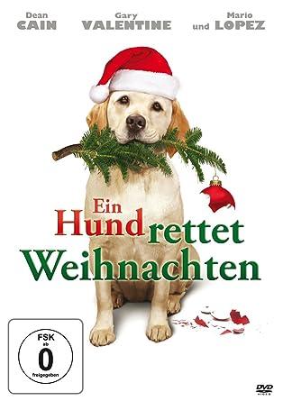 Ein Hund rettet Weihnachten - DVD