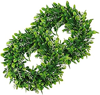 Best LSKYTOP 2 Pack Boxwood Wreath Round Wreath Artificial Wreath Green Leaves Wreath Door Wall Window Decoration,11Inch/PC Review