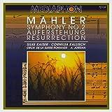 Symphony No. 2 in C Minor 'Resurrection': V. Im Tempo des Scherzos. Wild herausfahrend