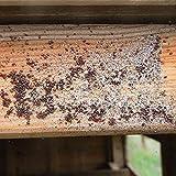 Ida Plus – Kieselgur Milben Spray – Mittel gegen Vogelmilben, Ameisen, Flöhe & Insekten – Insektenspray für den Hühnerstall, Garten & Haus – für Hühner, Geflügel, Kaninchen & Hunde