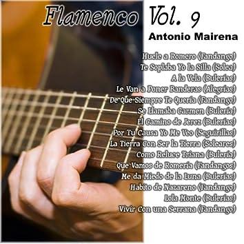 Flamenco Vol. 9