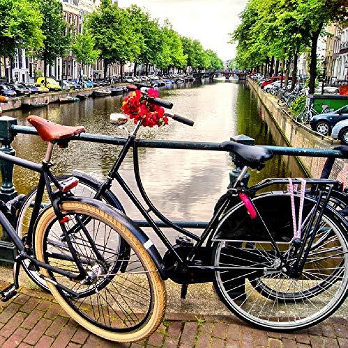 Rompecabezas de 1500 Piezas, Rompecabezas de madera, Juego de Rompecabezas de relajación, Rompecabezas para el Cerebro, Regalo para niños y Adultos (87x57cm) bicicleta