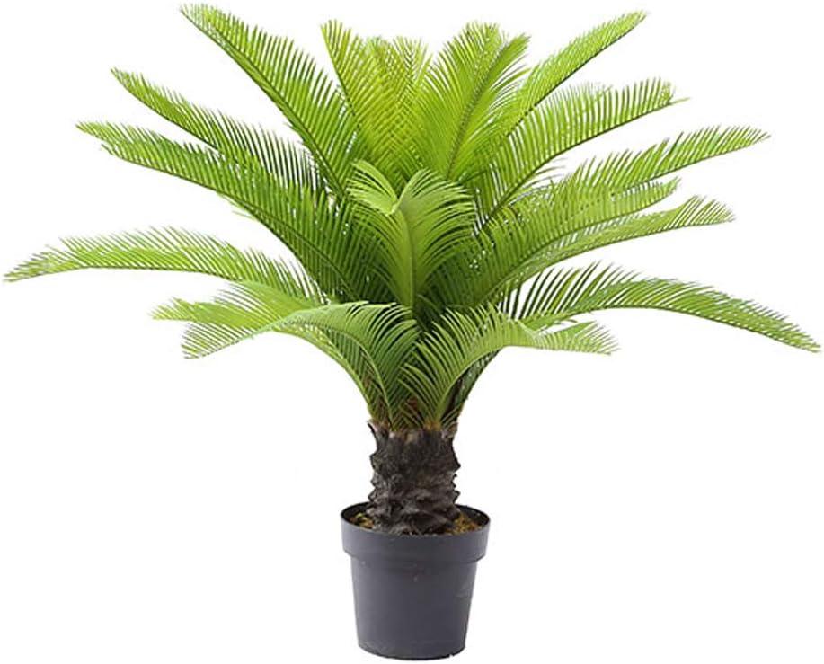 Ranking TOP17 AMERIQUE Gorgeous 3 Feet Direct stock discount Cycas Sago Palm Artificia Tree Revoluta