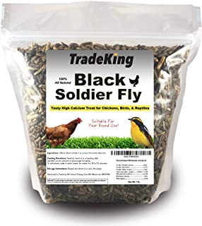 TradeKing Black Soldier Fly Larvae | Perfect Treat for Chickens, Wild Birds, Fish & Reptiles - High Energy, Healthy Pet Treat Containing 50X More Calcium Than Other Feeder Insects (1lb)