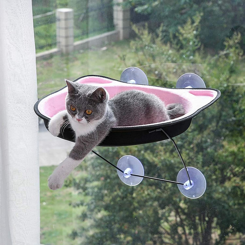 Cat Bed Window, Cat Window Hammock, Beds Perch, Cats Sunny Seats, Hammocks Window Sill,Cat Hammock Window Suction Cups, Large,Pink