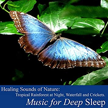 Healing Sounds of Nature: Tropical Rainforest (Waterfall and Crickets)