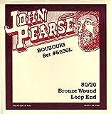 John Pearse Strings® 5200L Jeu de Cordes pour Irish Bouzouki - 80/20 Bronze Wound - Loop End - 10 Cordes Simples - Light Gauge Customs 11-40