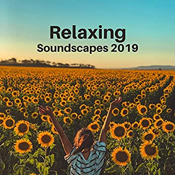 Relaxing Soundscapes 2019