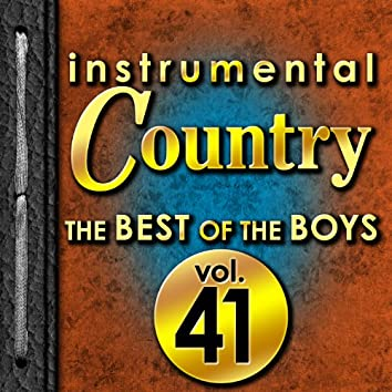 Instrumental Country: The Best of the Boys, Vol. 41