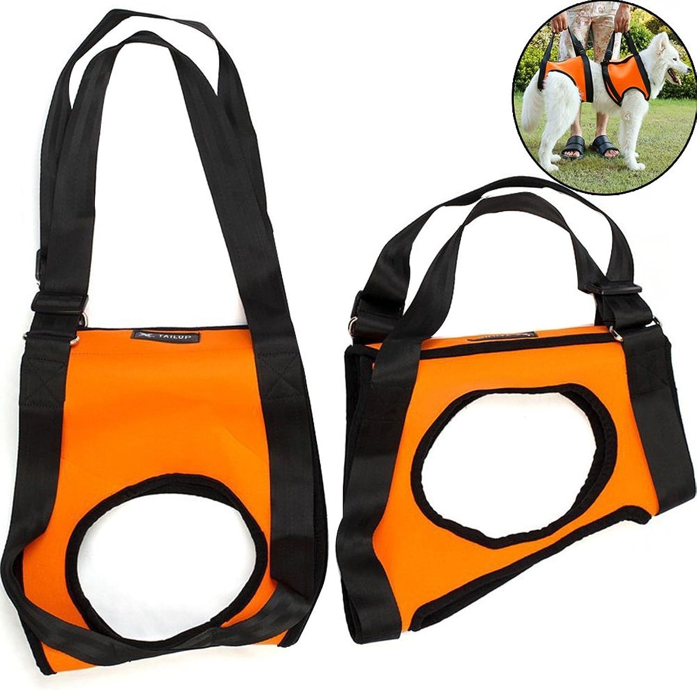 Creation Core Dog Lift Rehabilitation Support Harness Assist for Elderly Disable Joints Surgery(orange,1520Kg)